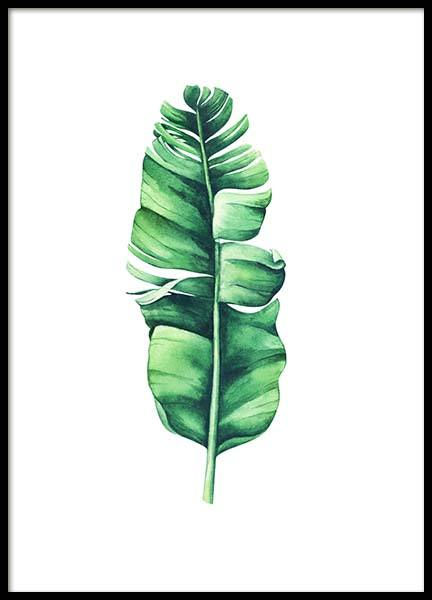 Banana Leaf Aquarelle Poster in the group Prints / Floral at Desenio AB (10071)