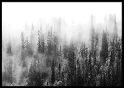 Over The Forest Poster in the group Prints / Black & white at Desenio AB (10177)