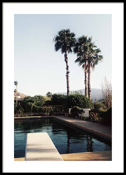 Palm Springs Pool Poster in the group Prints / Nature at Desenio AB (10222)