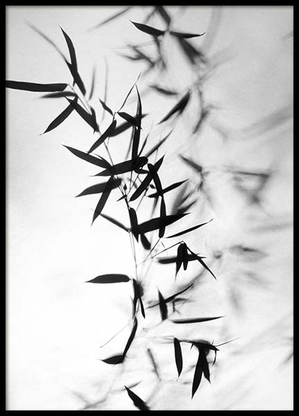 Bamboo Black Poster in the group Prints / Black & white at Desenio AB (10391)