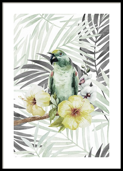 Tropical Bird No2 Poster in the group Prints / Animals at Desenio AB (10649)