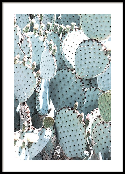 Pastel Pear Cactus No1 Poster in the group Prints / Floral at Desenio AB (10833)
