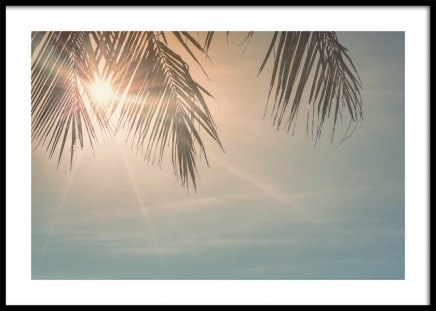 Sunset Palm Leaves Poster in the group Prints / Nature / Skies at Desenio AB (10882)