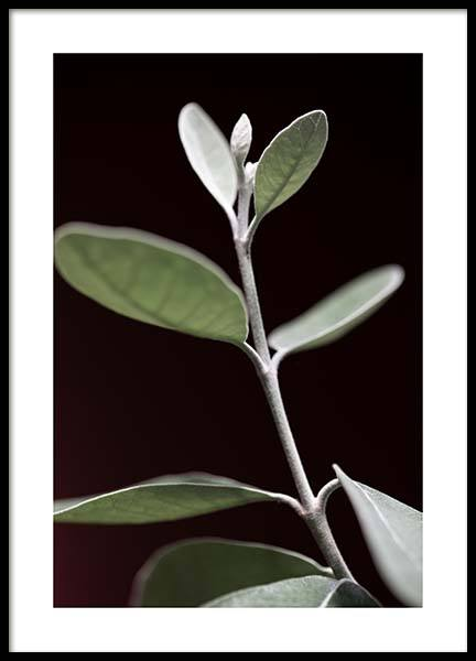 Tiny Leaves No1 Poster in the group Prints / Floral at Desenio AB (11654)