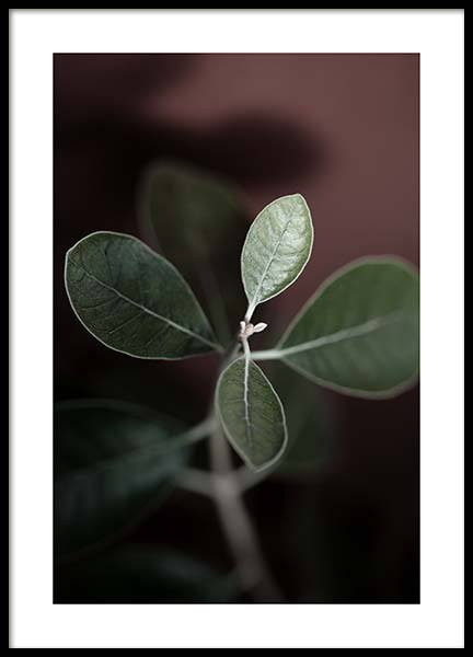 Tiny Leaves No2 Poster in the group Prints / Sizes / 50x70cm | 20x28 at Desenio AB (11655)