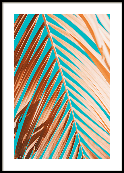 Palm Leaf Against Blue Sky Poster in the group Prints / Floral at Desenio AB (12414)