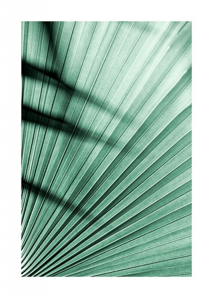 Tropical Palm Leaf Poster in the group Prints / Floral at Desenio AB (12564)