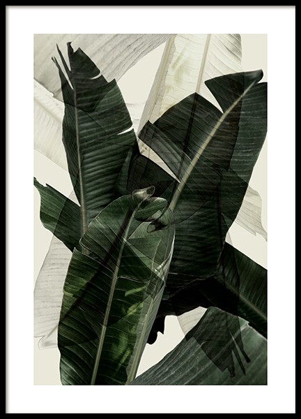 Banana Leaf Shades No2 Poster in the group Prints / Photographs at Desenio AB (12586)