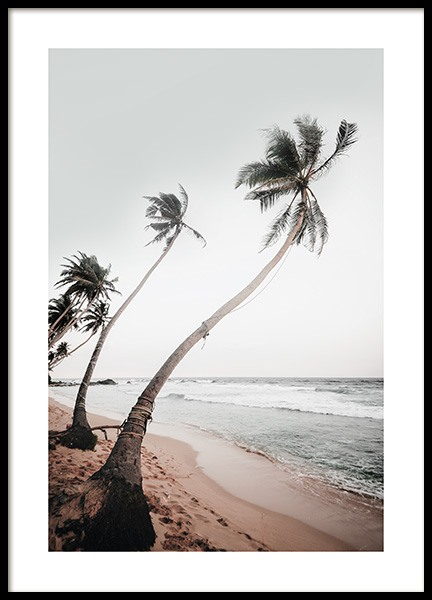 Sri Lanka Palms Poster in the group Prints / Nature / Tropical at Desenio AB (12645)