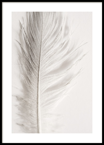 Angel Feather Poster in the group Prints / Photographs at Desenio AB (12983)