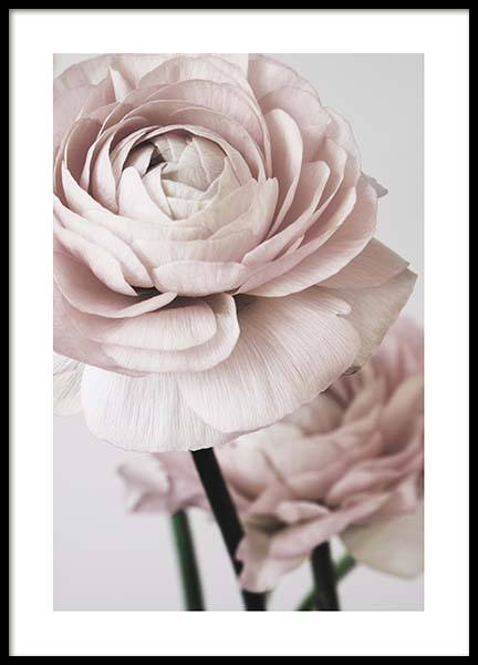 Pink Flower Dream No2 Poster in the group Prints / Photographs at Desenio AB (3926)