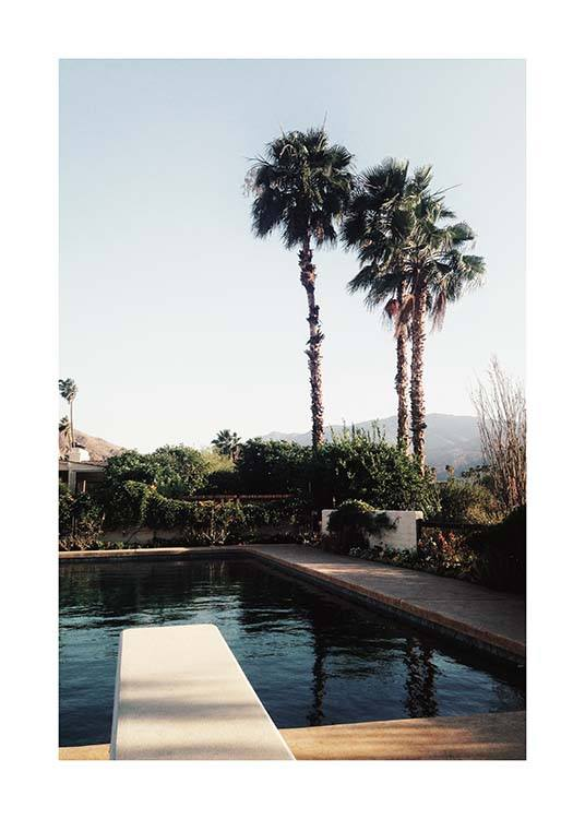 Palm Springs Pool Poster / Nature at Desenio AB (10222)