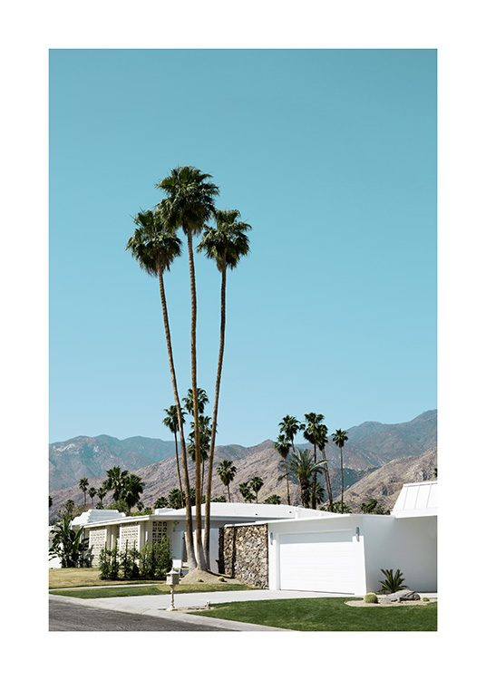 Street of Palm Springs Poster / 70x100 cm | 27 ½ x 39 ⅜ in at Desenio AB (10790)