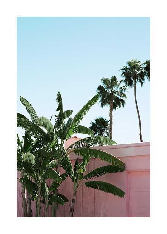 Pink Banana Leaves Poster / Green plants at Desenio AB (10791)