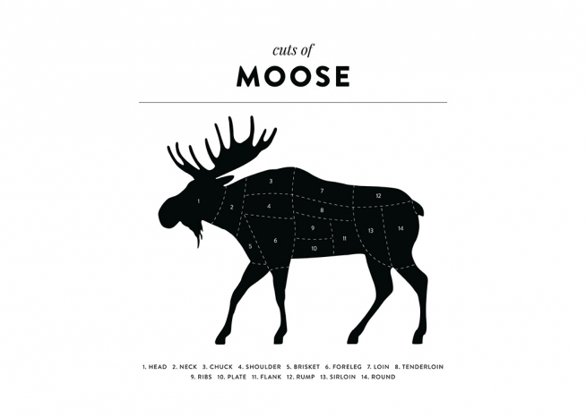 Cuts Of Moose Poster