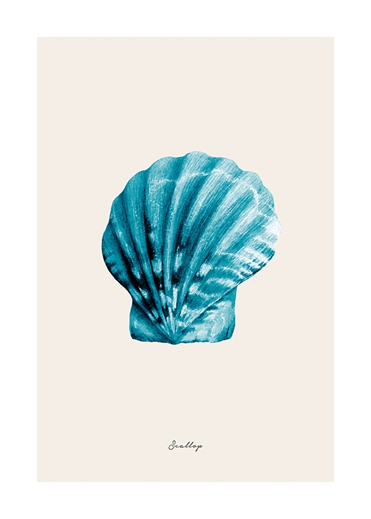 Blue Scallop Poster / Nature at Desenio AB (12427)