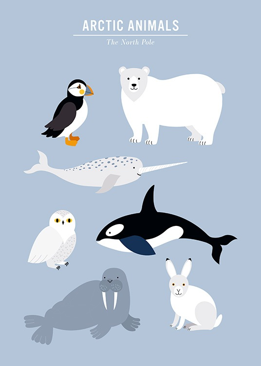- Kids poster with a graphical illustration in blue and with arctic animals