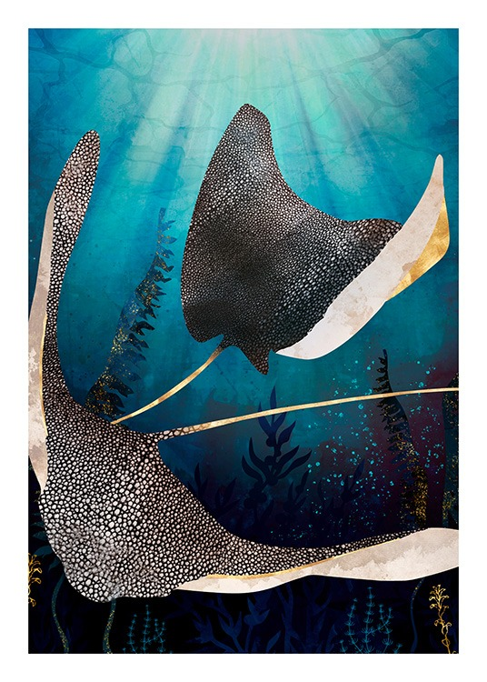- Graphical illustration of stingrays with white spots and gold details