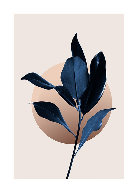 – Dark blue magnolia leaves with a graphic illustrated circle behind it, on a beige background