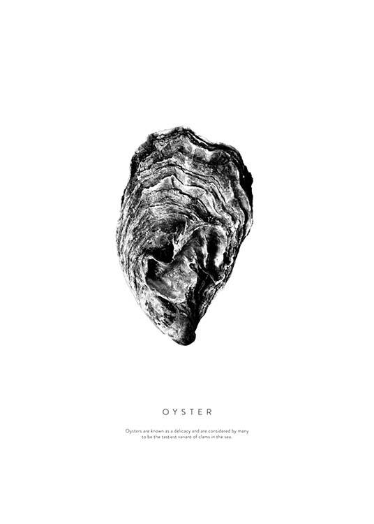 Oyster Poster / Black & white at Desenio AB (3164)